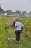 vigne benoit lecomte01