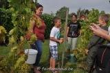 vigne benoit lecomte18