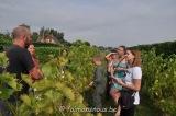 vigne benoit lecomte19