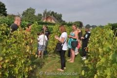 vigne benoit lecomte17