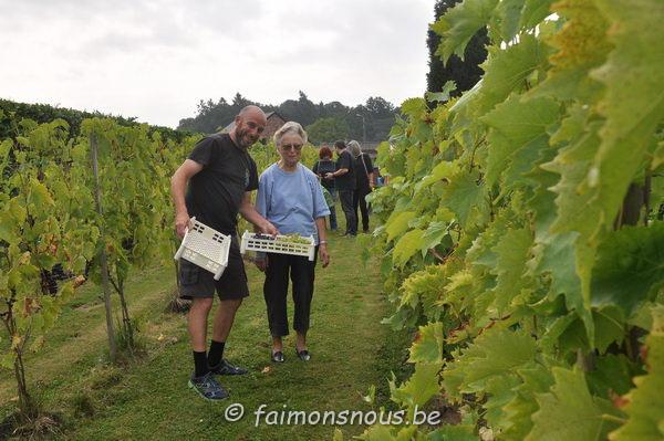 vigne benoit lecomte02