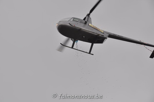 chasse-oeufs-borlatis142