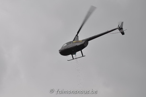 chasse-oeufs-borlatis145