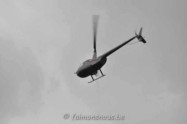 chasse-oeufs-borlatis146