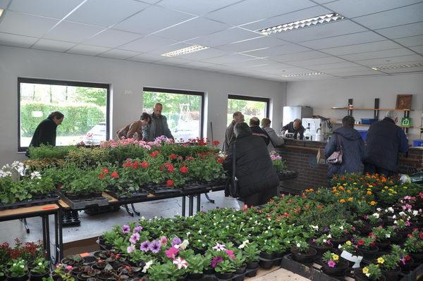 foire-aux-plantes18
