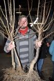 journee-de-arbre11