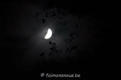 halloween116